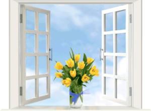 заказать окна в Воронеже